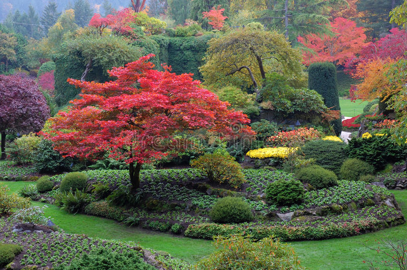 Sunken garden in fall royalty free stock photo