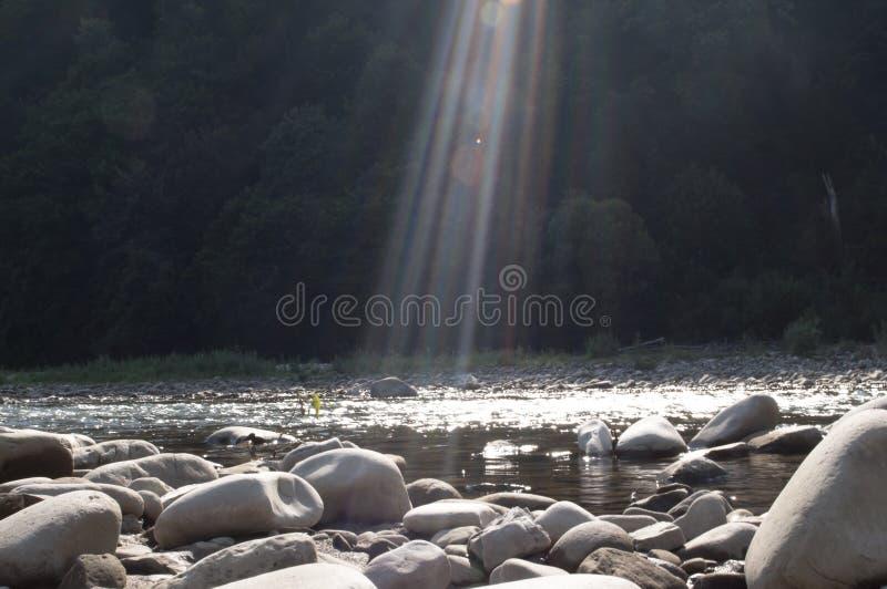 sunlight стоковые изображения rf