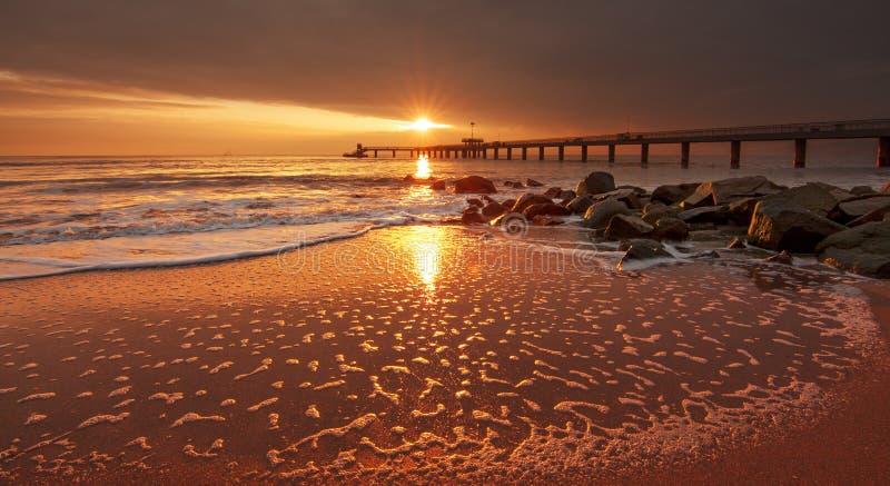 sunlight zdjęcie royalty free