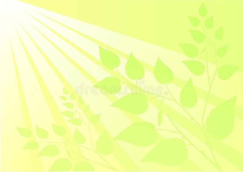 Download Sunlight stock illustration. Illustration of spring, sunlight - 7272136