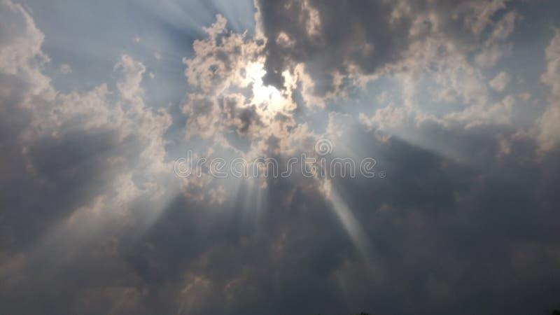 sunlight стоковая фотография rf