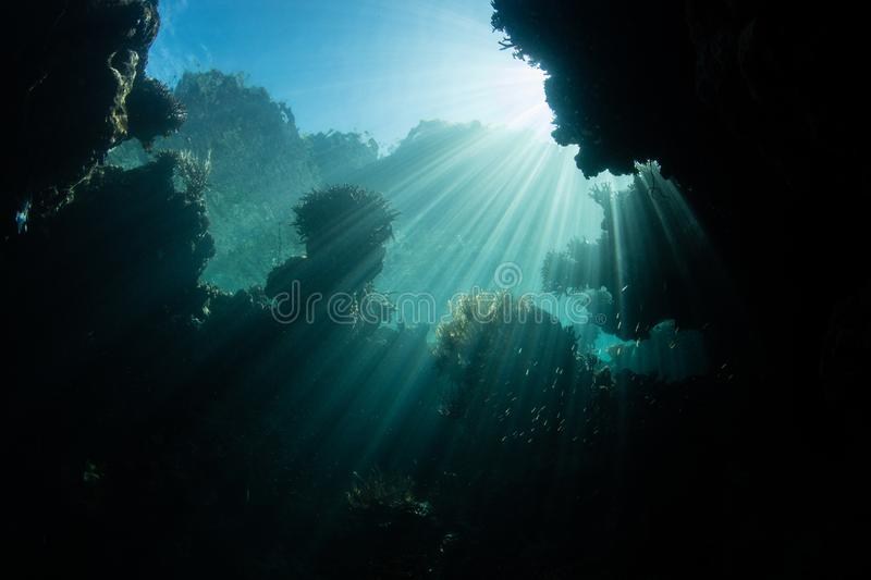 Sunlight Descending Into Underwater Cavern stock photos