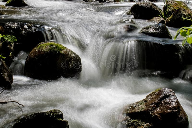 Sunlight Hits A Woodland River royalty free stock image