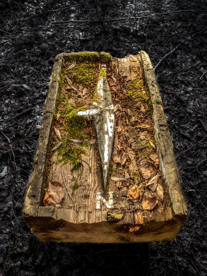Sunlight on an Old Wooden Compass in the Forest stock photos