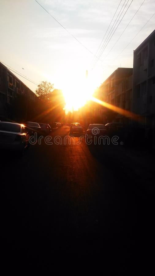 Sunlight royalty free stock image