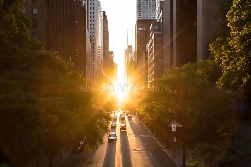 Sunlight shines on the buildings and cars along 42nd Street through Midtown Manhattan New York royalty free stock photos
