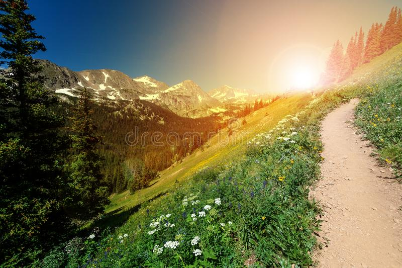 Sunlight shines on a dirt hiking trail in a Colorado Rocky Mountain landscape stock photography