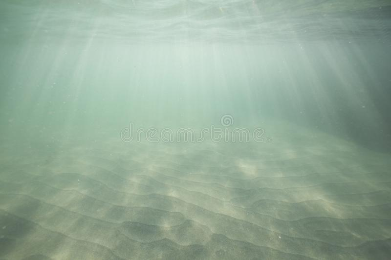 Sunlight shining through the ocean surface and reaching the sea bed. stock images