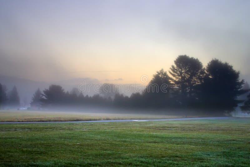 Sunlight streaking through foggy trees on an autumn morning stock photo