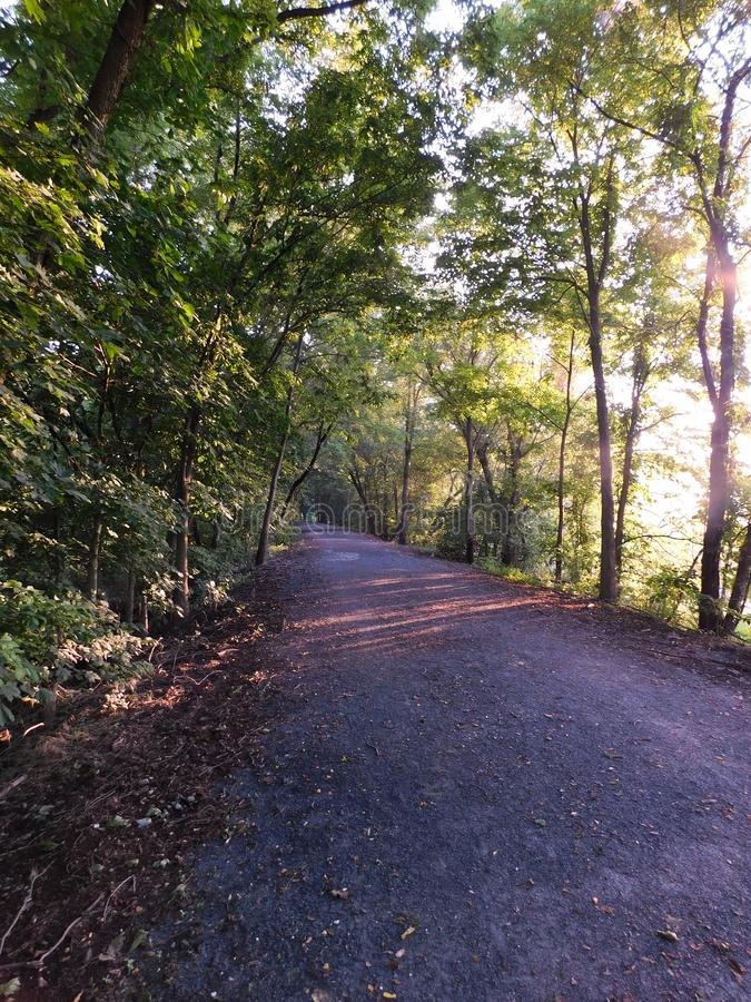 Sunlight through the trees, on the Lancaster Junction Trail royalty free stock photography
