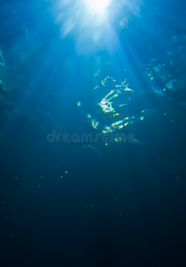 Download Sunlight From Underwater Stock Photo - Image: 8575330