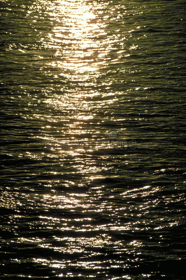 Sunlight in the water royalty free stock photography