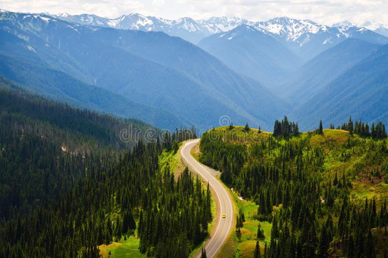 Sunlight upon winding road, Olympic National Park