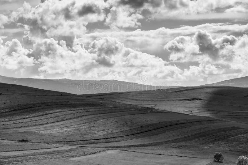 Sunlights ломая ринв драматические облака над аграрным полем на весеннем времени стоковое изображение rf