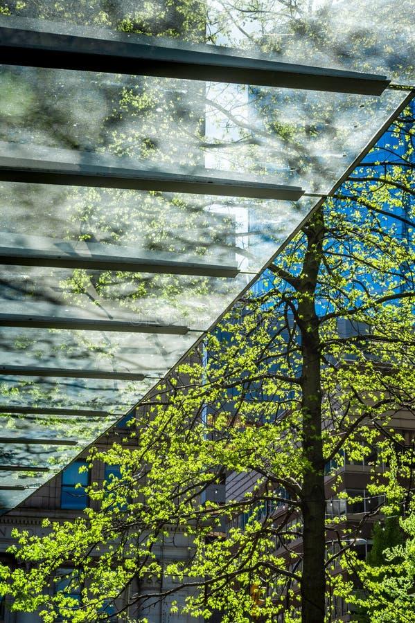 sunliit现代清楚的玻璃修造的入口突出物摘要与透镜火光和树,街市城市设置的 免版税库存照片