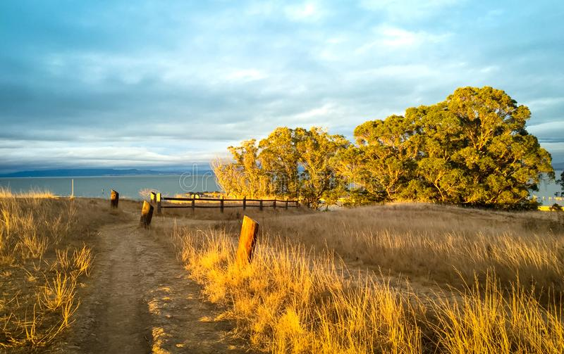 Sunlit fall season nature background with walking path, golden g stock images