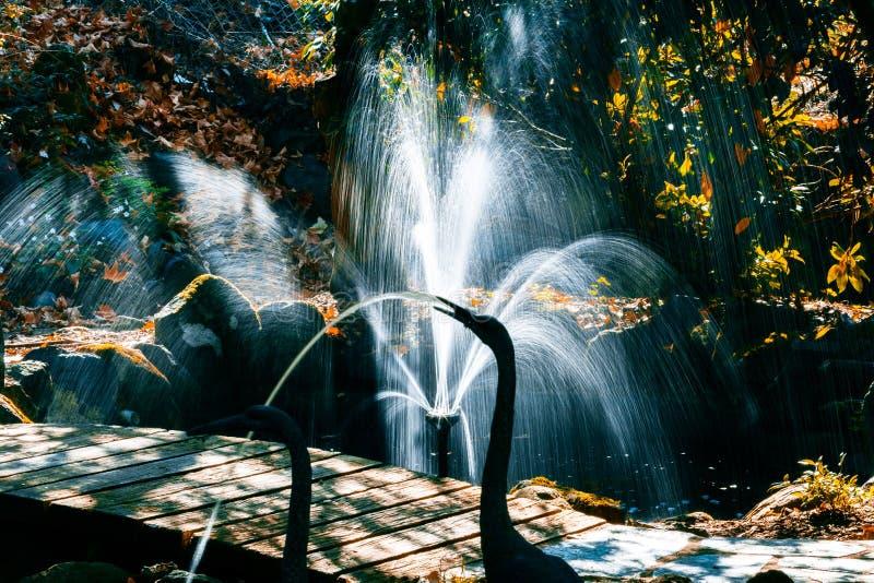 Sunlit fountain in a garden. Sunlit fountain in a beautiful autumn garden stock photos