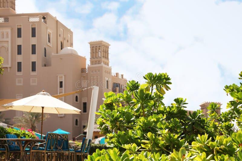 Sunlit green bush near outdoor cafe. At tropical resort stock photo