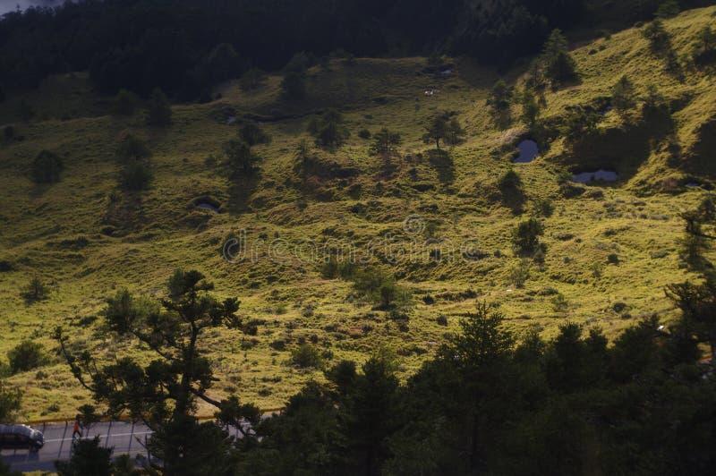 Sunlit hillside beside road stock photo
