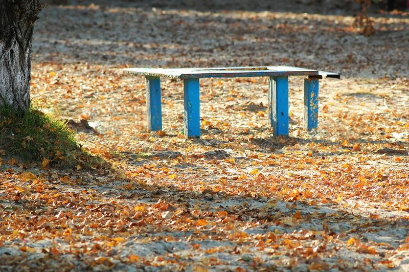 Sunlit old blue wooden bench and table at an autumn beach park. Sunny day. royalty free stock photo