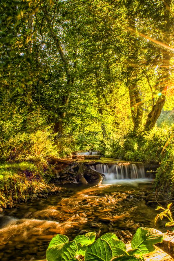 Sunlit river in a forest, small natural waterfall, clear mountain water. Sunlit river in a forest, small natural waterfall. Clear mountain water royalty free stock photo