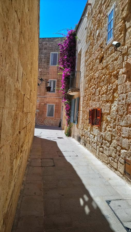 Sunlit alley in Medina. Sunlit stone alley, with purple flowers on the walls and a blue sky stock photography