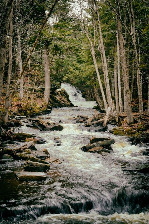 sunlit waterfall στοκ φωτογραφίες με δικαίωμα ελεύθερης χρήσης