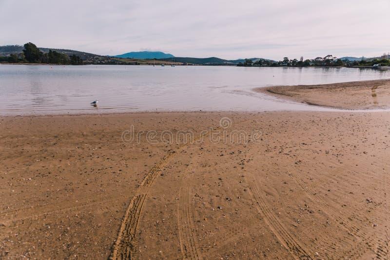 Sunny Australian-Strand in Cremorne, Tasmanien stockbild