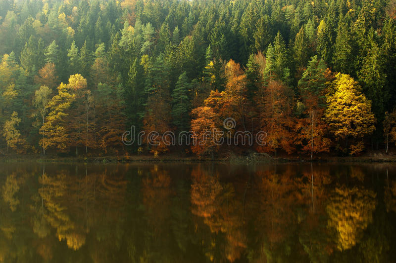 Download Sunny autumn stock photo. Image of bright, natural, indian - 22203772