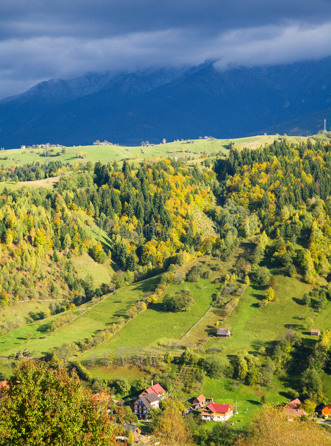 Download Sunny autumn stock image. Image of rural, peaceful, seasonal - 8143437