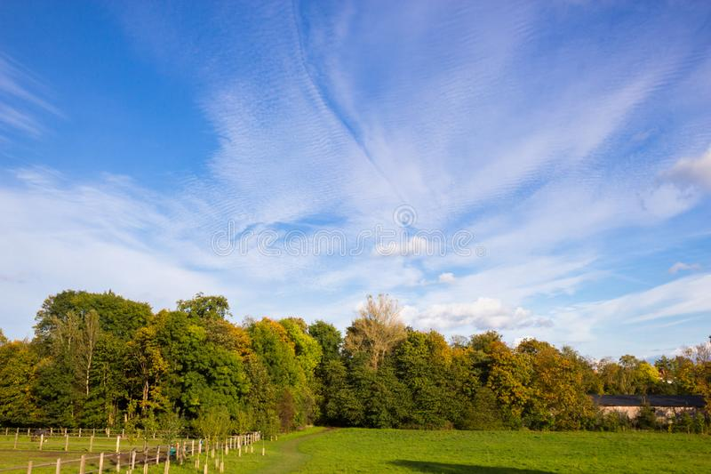 Sunny autumn days in park of Copenhagen Area. Denmark stock image