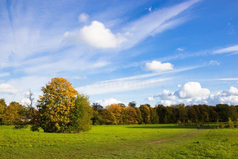 Sunny autumn days in park of Copenhagen Area. Denmark stock photos