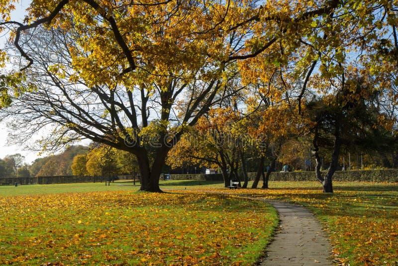 Sunny autumn days in park of Copenhagen Area. Denmark royalty free stock photo
