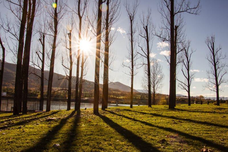 Sunny Autumn in Park royalty-vrije stock fotografie