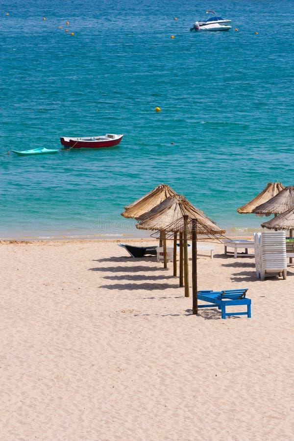 Free Sunny Beach Royalty Free Stock Photography - 20561237