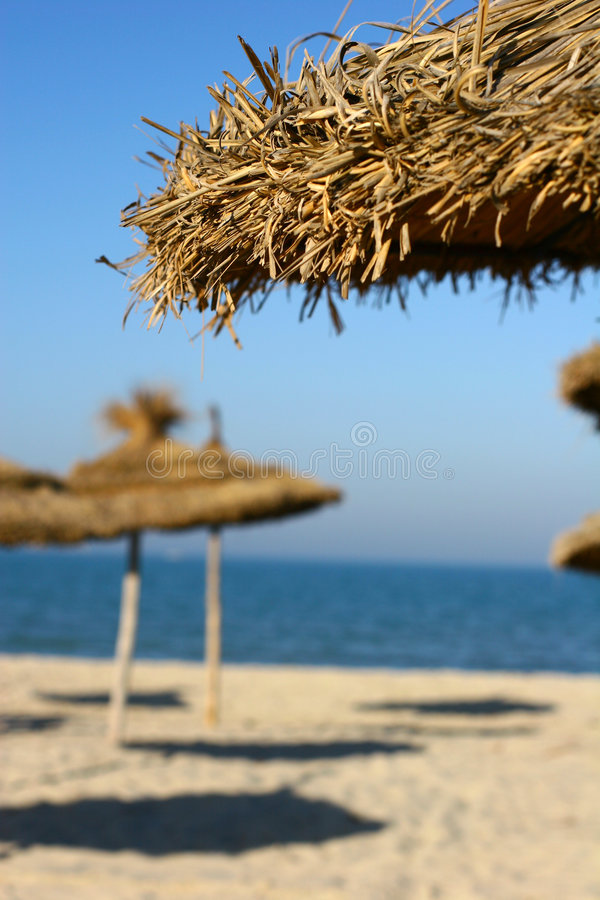 Sunny beach royalty free stock images