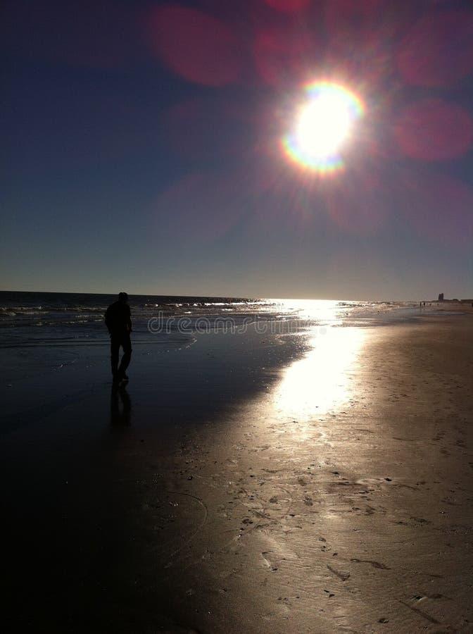 Sunny Beach Afternoon stockfotos