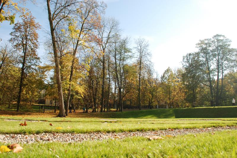 Sunny beautiful day in the park. Green grass and colorfull leafs. Sunny weather royalty free stock photography