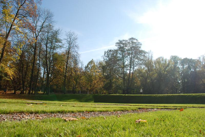Sunny beautiful day in the park. Green grass and colorfull leafs. Sunny weather royalty free stock image