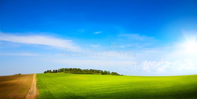 Art sunny blue sky over spring farmland green field royalty free stock image