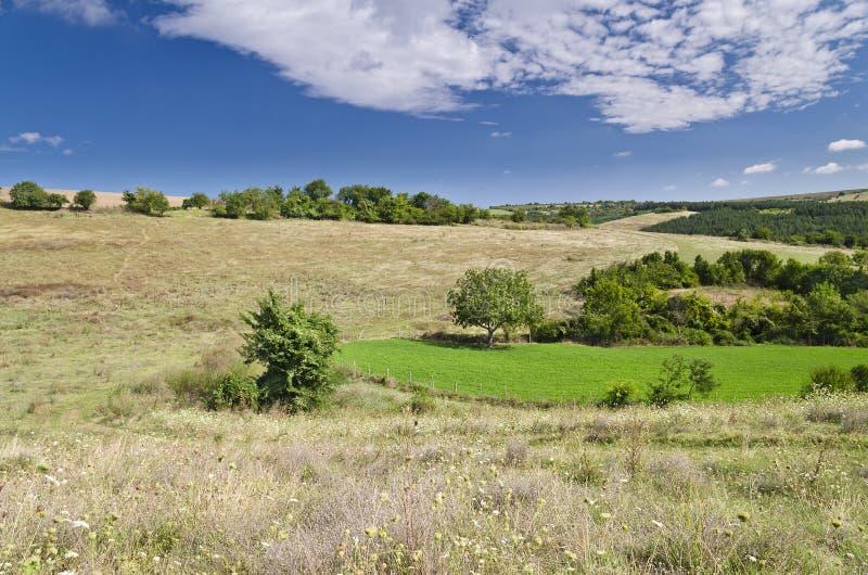 Sunny Blue Sky, prado y colinas foto de archivo