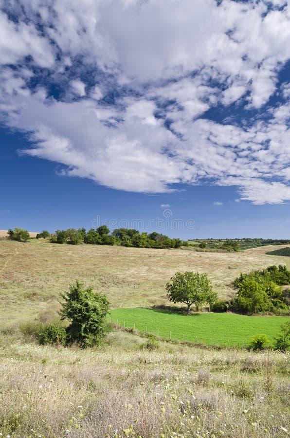 Sunny Blue Sky, Weide en heuvels stock fotografie