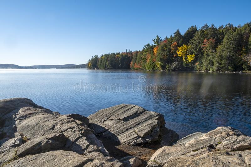 Sunny and Bright Autumn Morning on the Rocky Shore of Canoe Lake, Algonquin Park stock foto