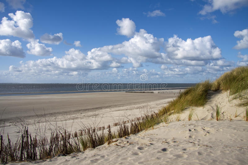Download Sunny day at baltic sea stock image. Image of feature - 15189623