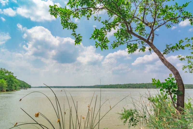 Sunny Day bij een meer in Texas stock afbeelding