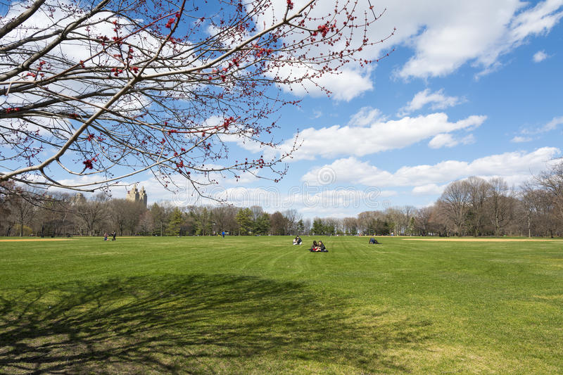 Sunny day at the Central Park. royalty free stock images