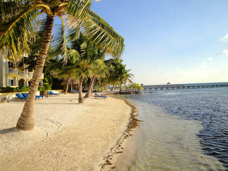 Sunny Day en la playa en Belice imagen de archivo