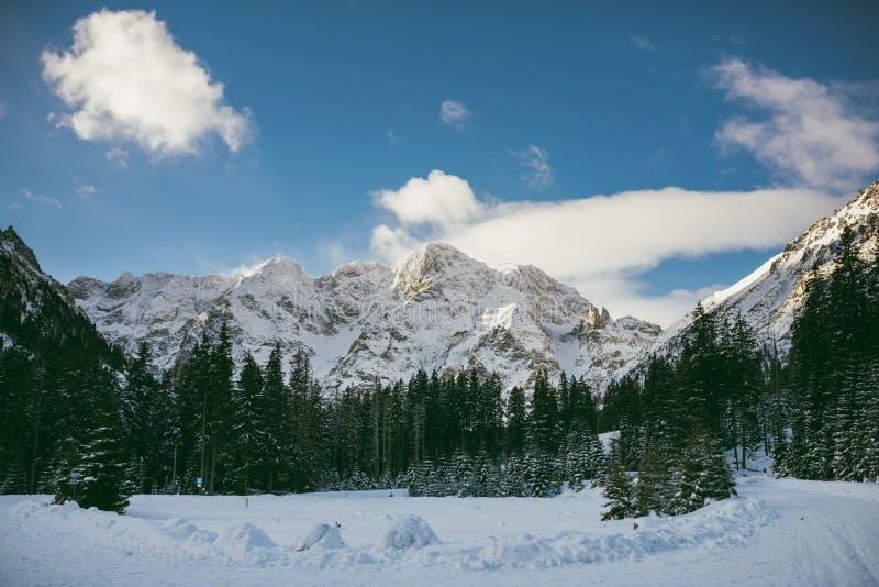 Sunny day in High Tatra Mountains stock photo