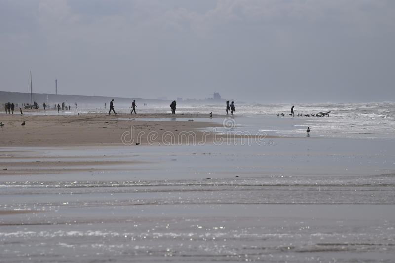 A sunny day out at the beach. A sunny day, people on the beach at Zandvoort, Netherlands stock photo