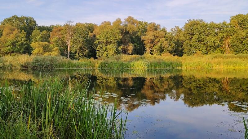 Sunny day on the quiet river stock photography